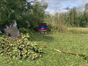 Besonders der Bereich direkt an der Kahl ist teilweise unter entwurzelten oder abgebrochenen Bäumen begraben
